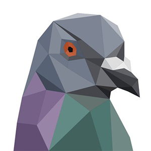 Pigeoncoin